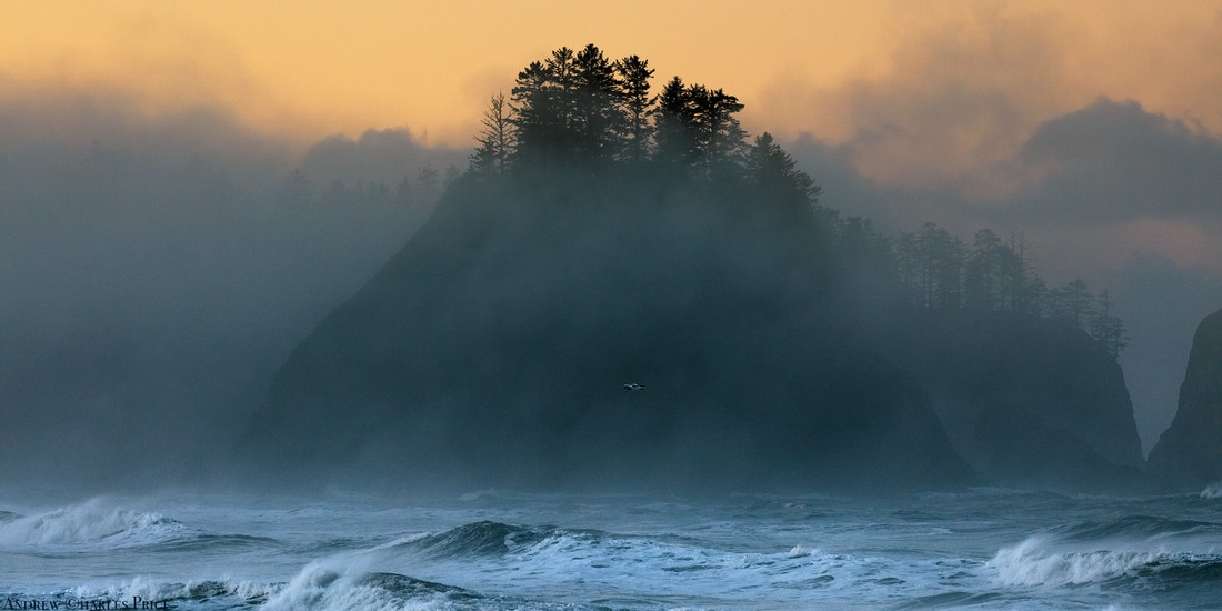 Washington Rialto Beach Sunrise