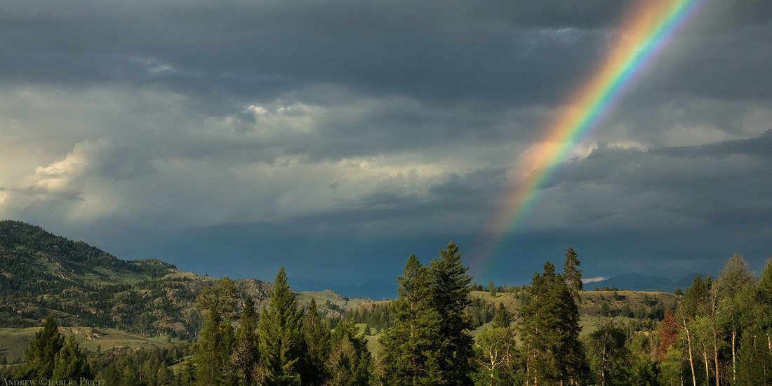 Wyoming Yellowstone Rainbow